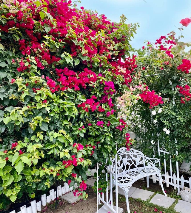 Khu vườn rộng 300 m2 của mẹ Việt ở Mỹ khiến bao người mê mẩn - 7